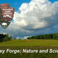Valley Forge Nature & Science