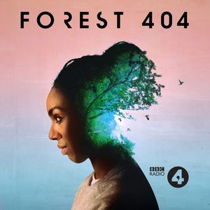 Forest 404 Podcast Image