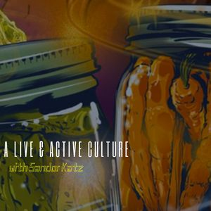 "127. Sandor Katz in ""A Live & Active Culture"" // The Art & Alchemy of Fermentation & the War on Bacteria"