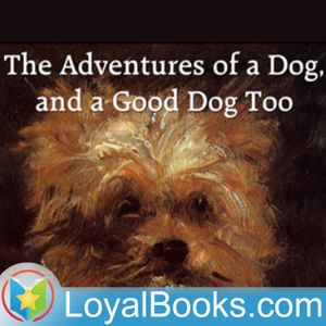 The Adventures of a Dog, and a Good Dog Too by Alfred Elwes Podcast Image