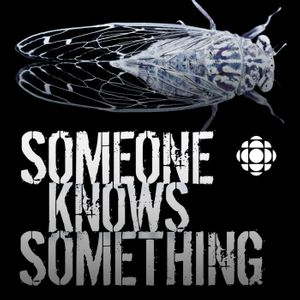 Someone Knows Something Podcast Image