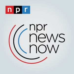 NPR News Now Podcast Image